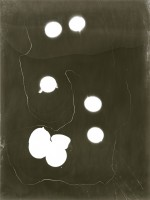 Six Eggs, 2014, Photogram, 11in x 14in
